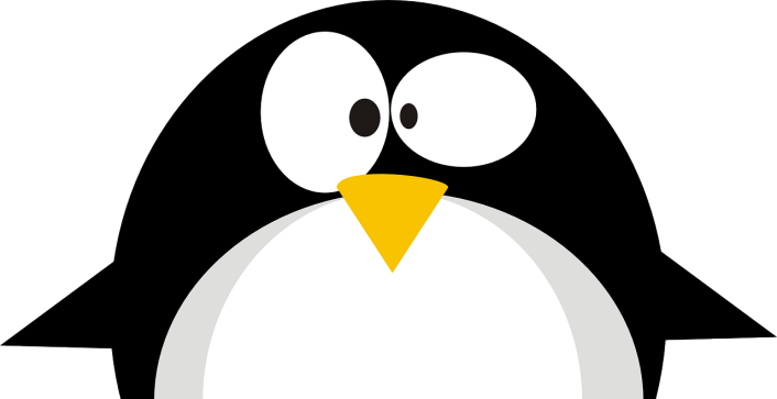 Read more about the article Linux Has Changed…
